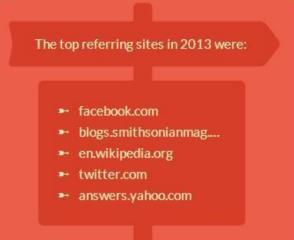 Top Referring Sites in 2013_IMAGE